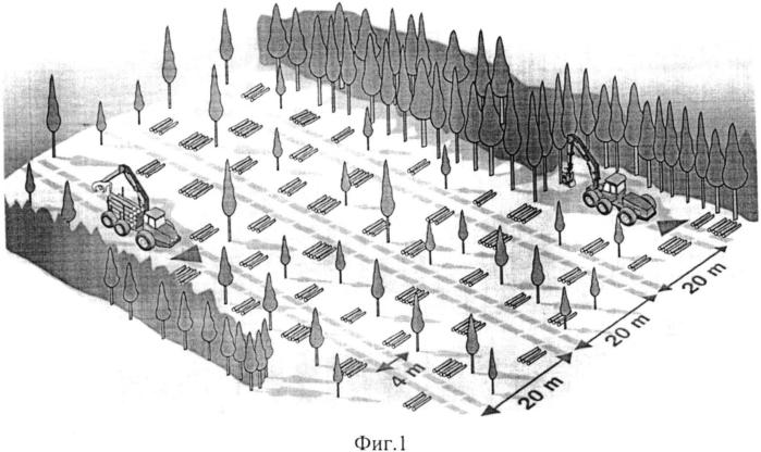 Способ разработки лесосек