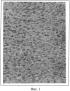 Способ получения подкожных ксенографтов клеточной линии меланомы кожи человека mel cher с мутацией v600e braf для доклинического изучения противоопухолевых таргетных средств