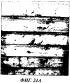 Композиция для защиты древесины, содержащая изотиазолон, обеспечивающая защиту против окрашивания поверхности
