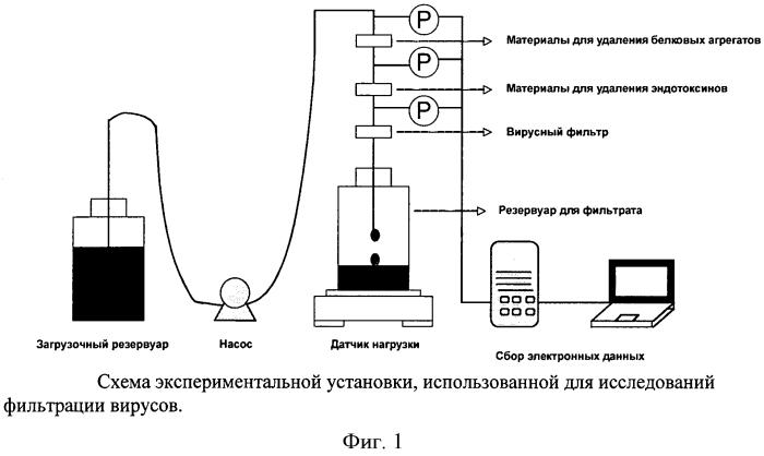 Способ усовершенствования процесса удаления вирусов при очистке белков
