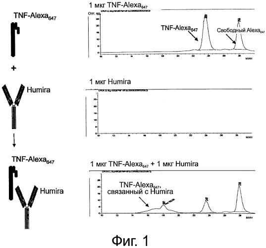 Способы определения изотипа антител против лекарственных препаратов
