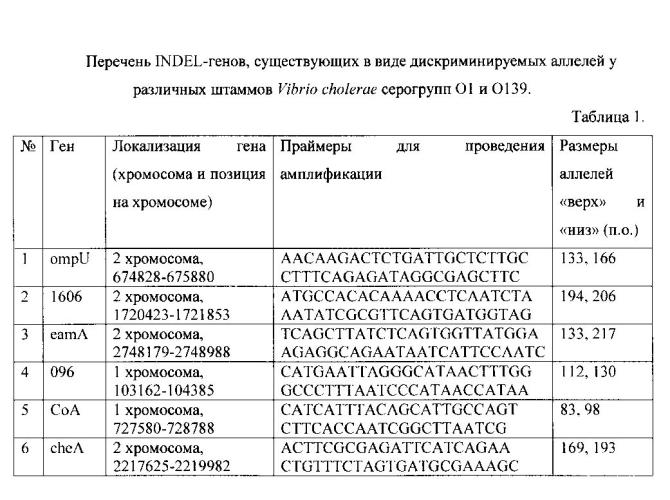 Способ молекулярно-генетического внутривидового типирования v. cholerae о1 и о139 серогрупп