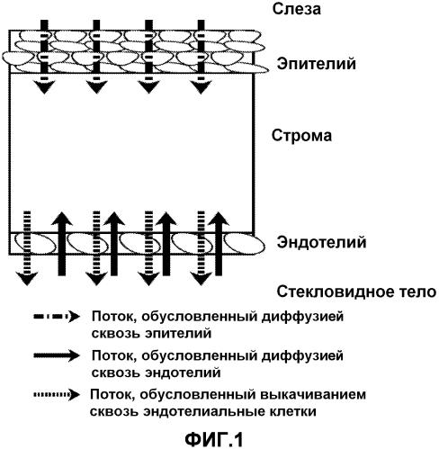 Неинвазивный датчик для определения функциональных характеристик роговицы, устройство, содержащее упомянутый датчик, и его применение