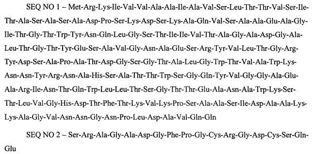 Способ получения рекомбинантного белка sav-rgd