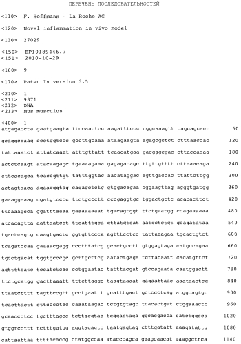 Муриновая модель воспаления с делецией il33 n-концевого домена