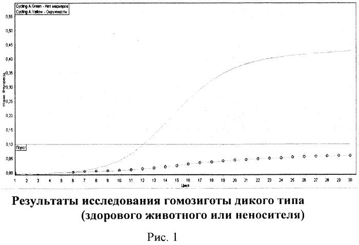 Набор последовательности праймеров и аллель-специфических зондов для одновременной генодиагностики двух мутантных аллелей, вызывающих cvm и blad у крупного рогатого скота