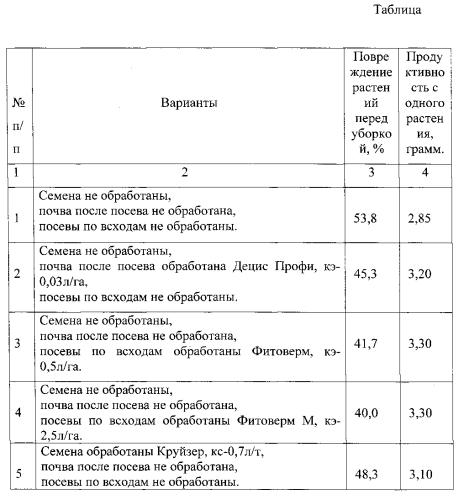 Способ защиты гречихи от гречишного долгоносика