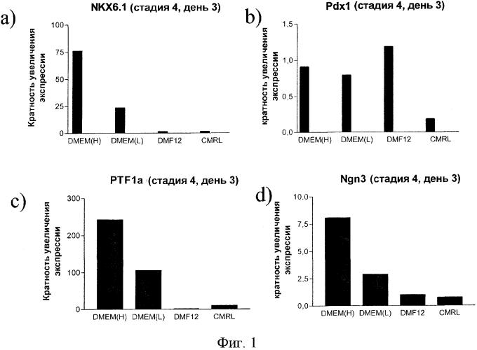 Популяция панкреатических эндокринных клеток-предшественников для снижения концентрации глюкозы в крови и способ дифференцировки панкреатических эндодермальных клеток