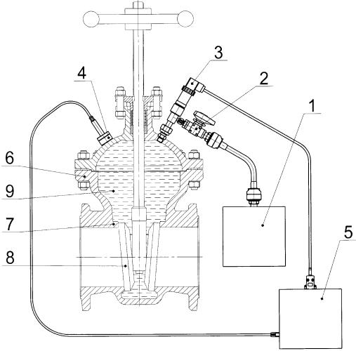 Способ определения герметичности затвора трубопроводной арматуры и устройство для его осуществления