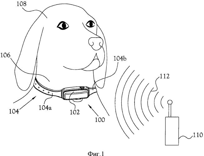 Антенна, встроенная в устройство для дрессировки животных