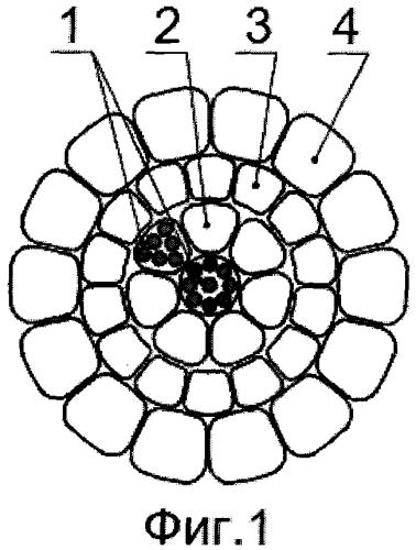 Сталеалюминиевый провод с встроенным оптическим кабелем для воздушной линии электропередачи (варианты)