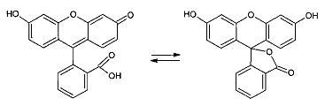 Аналоги природных дезоксирибонуклеозидтрифосфатов и рибонуклеозидтрифосфатов, содержащие репортёрные флуоресцентные группы, для использования в аналитической биоорганической химии