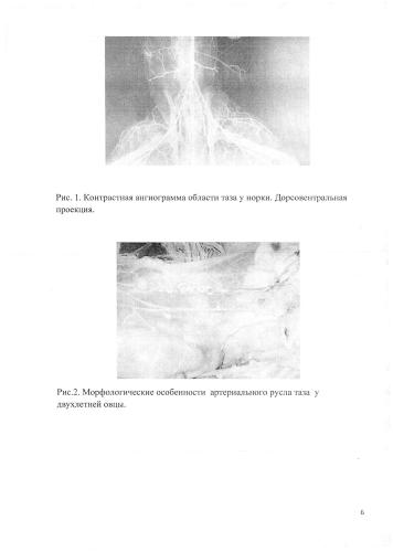 Состав жидкости для изучения и демонстрации артериального русла животных