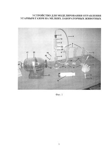 Устройство для моделирования отравления угарным газом мелких лабораторных животных