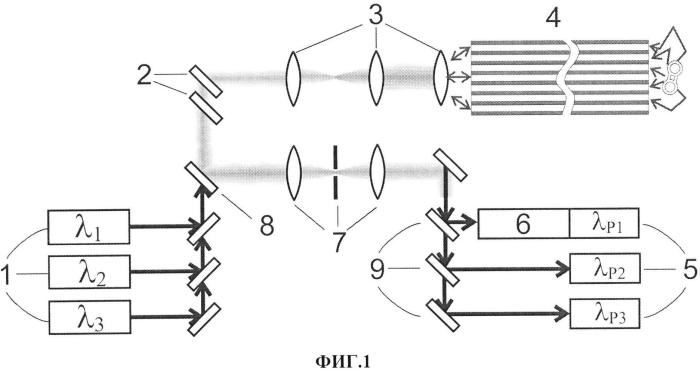 Многоканальный оптоволоконный нейроинтерфейс для мультимодальной микроскопии мозга животных