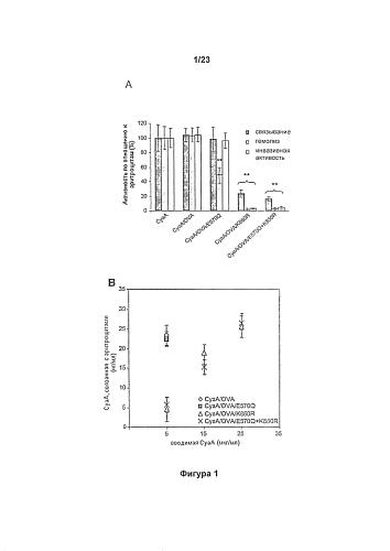 Мутантные полипептиды суаа и производные полипептидов, подходящие для доставки иммуногенных молекул в клетку