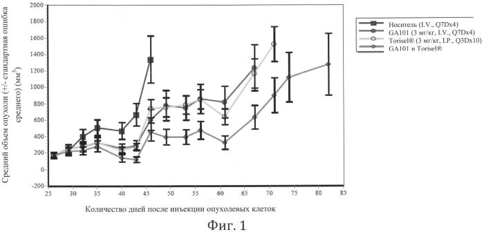 Комбинированная терапия афукозилированным антителом cd20 и ингибитором mtor
