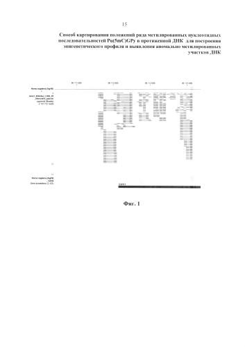 Способ картирования положений ряда метилированных нуклеотидных последовательностей pu(5mc)gpy в протяженной днк для построения эпигенетического профиля и выявления аномально метилированных участков днк