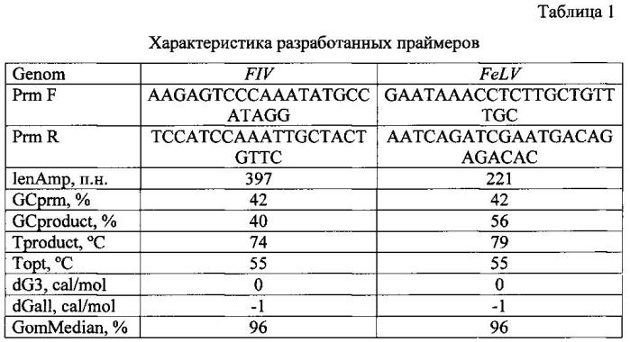Набор синтетических олигонуклеотидных праймеров и способ его применения для индикации вирусов иммунодефицита и лейкемии кошек в клиническом материале методом мультиплексной полимеразной цепной реакции