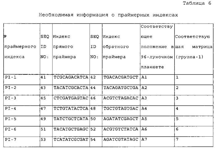 Новый способ пцр-секвенирования и его применение в генотипировании hla