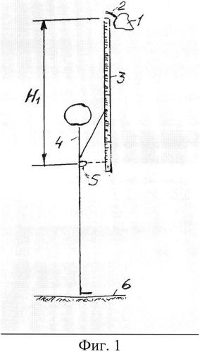 Способ измерения высоты листа дерева от почвы