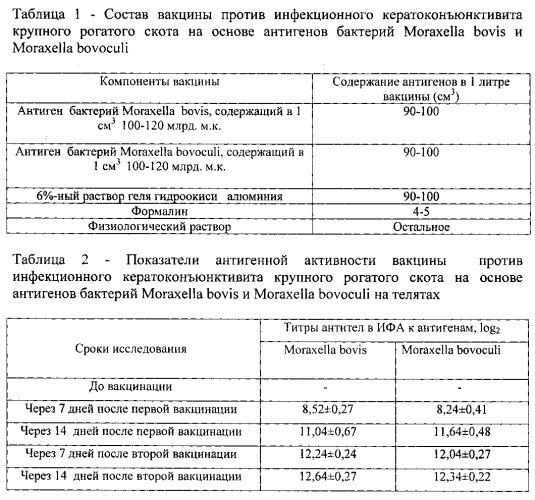 Вакцина против инфекционного кератоконъюнктивита крупного рогатого скота на основе антигенов бактерий moraxella bovis и moraxella bovoculi