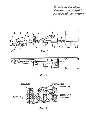 Устройство для уборки цветочных стрел и шаровидных зонтиков лука репчатого