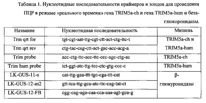 Способ определения уровня экспрессии химерного гена trim5a