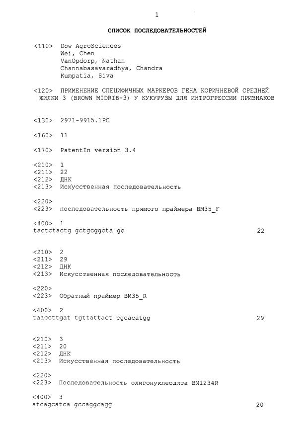 Применение специфических маркеров гена коричневой средней жилки 3 (brown midrib-3) у кукурузы для интрогрессии признаков