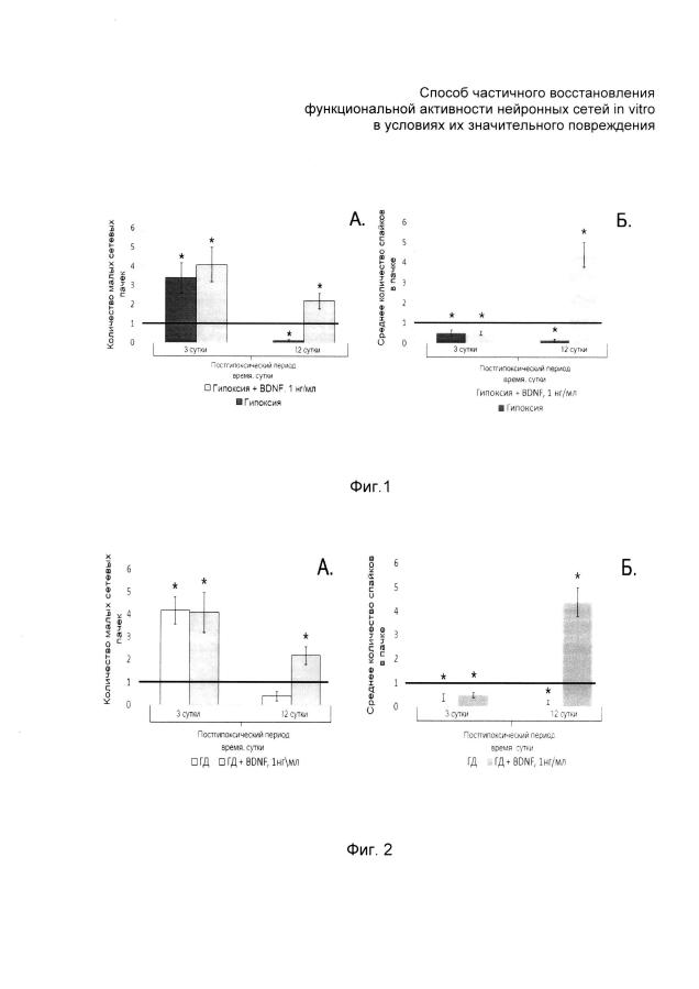 Способ частичного восстановления функциональной активности нейронных сетей in vitro в условиях их значительного повреждения
