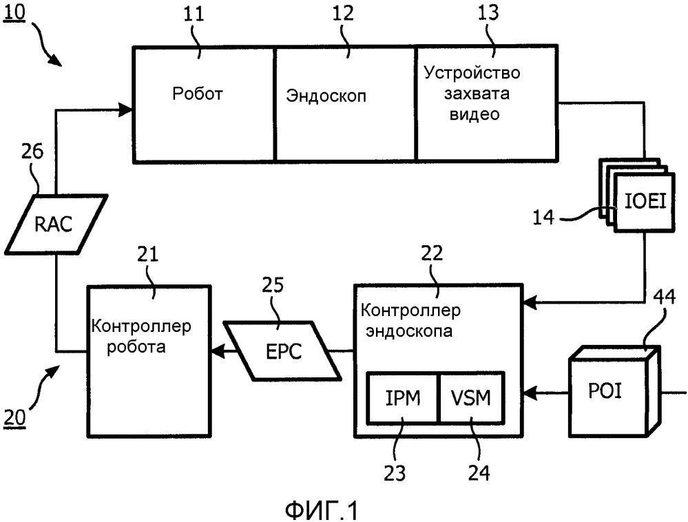 Роботизированное управление эндоскопом по изображениям сети кровеносных сосудов