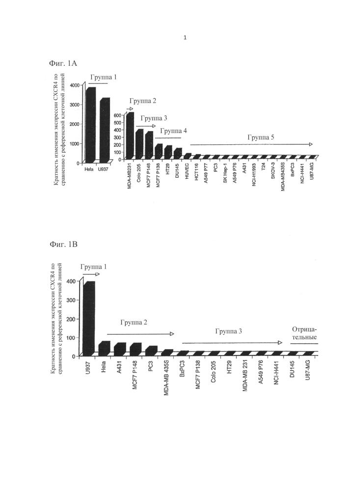 Гуманизированные антитела к cxcr4 для лечения рака