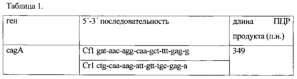 Тест-штамм микроорганизма helicobacter pylori гкпм-оболенск в-7215 для индикации и идентификации helicobacter pylori в образцах биоптатов слизистой оболочки желудка или двенадцатиперстной кишки