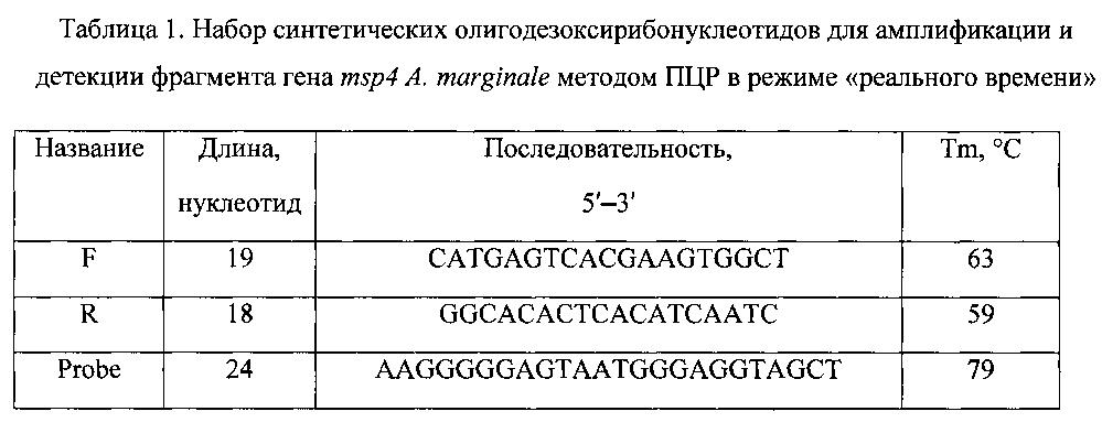 Набор синтетических олигодезоксирибонуклеотидов для детекции гена msp4 риккетсии anaplasma marginale методом полимеразной цепной реакции в режиме реального времени
