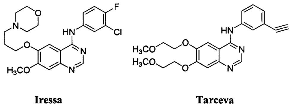 Замещенные 4-(селенофен-2(или 3)-иламино)пиримидиновые соединения и способы их применения