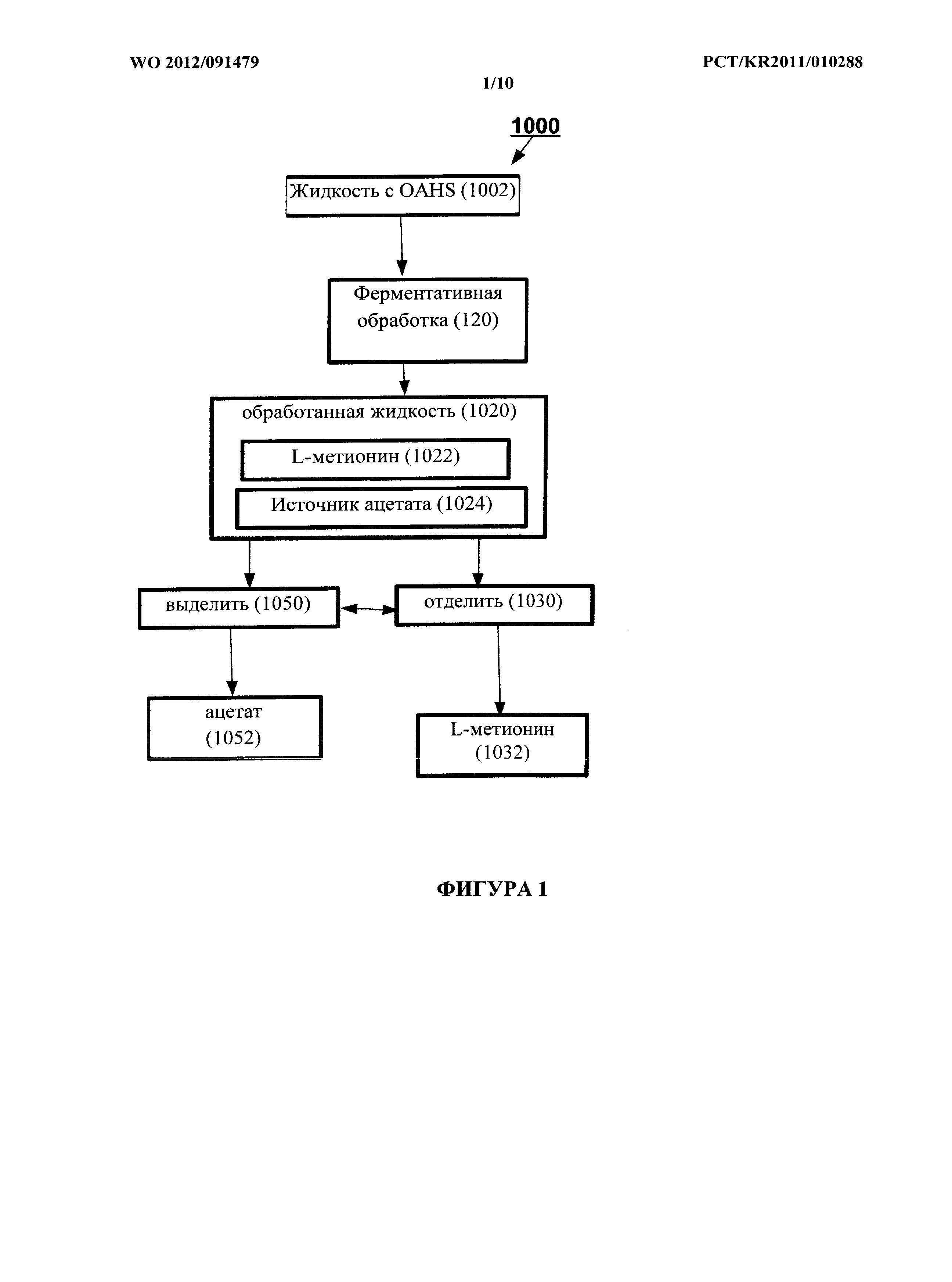 Способ получения l-метионина и родственных продуктов