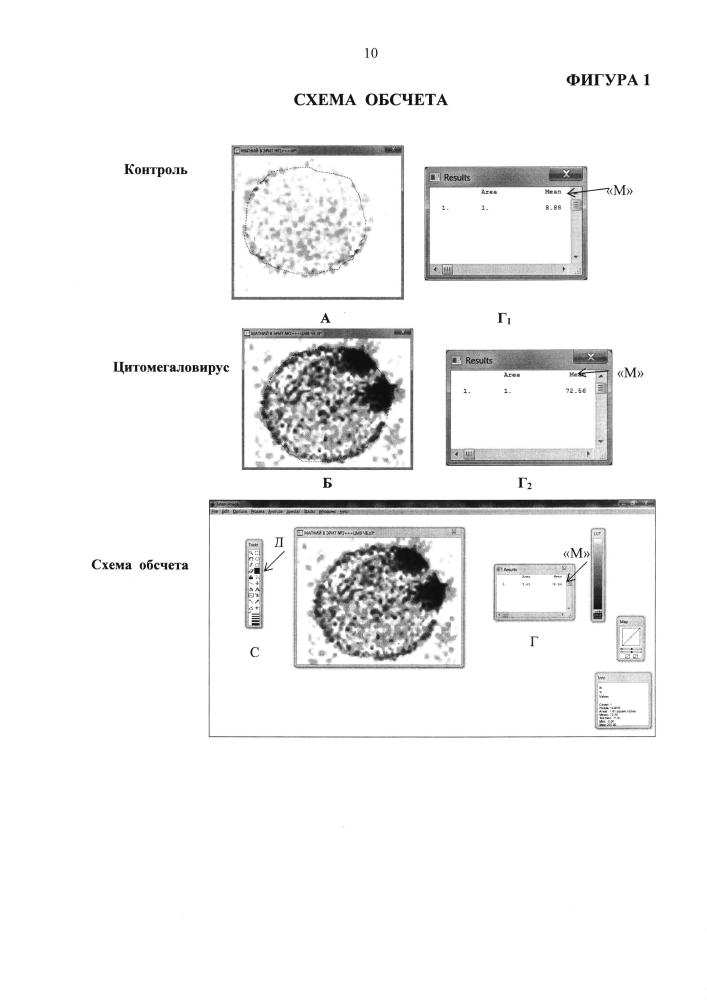 Способ оценки индуцирующего действия цитомегаловирусной инфекции на оксигенацию гемоглобина при повышении в эритроцитах содержания ионов магния