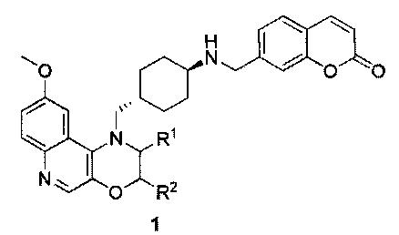 Трициклические соединения, обладающие противобактериальной активностью, способ их получения и содержащее их фармацевтическое средство