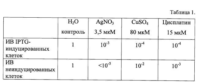 Рекомбинантная плазмидная днк pndctr1, кодирующая гибридный полипептид gst-ndctr1, штамм бактерий escherichia coli bl21(de3)/pndctr1 - продуцент гибридного полипептида gst-ndctr1 и гибридный полипептид gst-ndctr1, обладающий способностью хелатировать ионы меди, серебра и платины