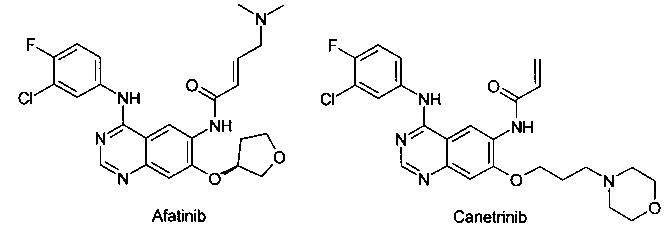 Дихлорацетат n1,n2-дизамещенного n4-[4-(1-метил-1н-индол-3-ил)-пиримидин-2-ил]-5-метоксибензол-1,2,4-триамина в качестве модулятора egfr для лечения рака