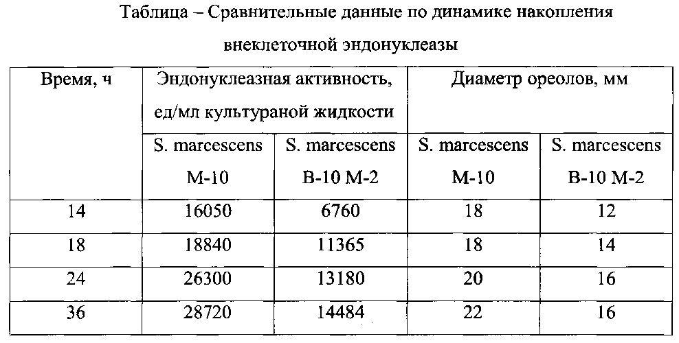 Штамм бактерий serratia marcescens m-10 - продуцент внеклеточной неспецифической эндонуклеазы, обладающей выраженным противовирусным действием
