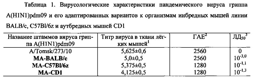 Адаптированные пандемические штаммы вируса гриппа a/tomsk/273/2010-ma1(h1n1pdm09), a/tomsk/273/2010-ma2(h1n1pdm09) и a/tomsk/273/2010-ma3(h1n1pdm09) для оценки действия противовирусных препаратов (варианты)