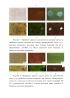 Способ обнаружения следов биологического происхождения