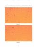 Способ стимулирования ростовых процессов микроводоросли хлореллы