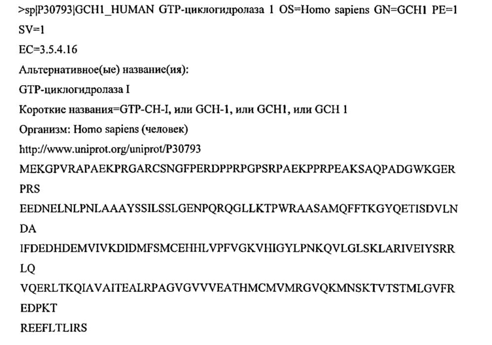 Новая вирусная векторная конструкция для нейронспецифического оптимизированного непрерывного синтеза dopa in vivo