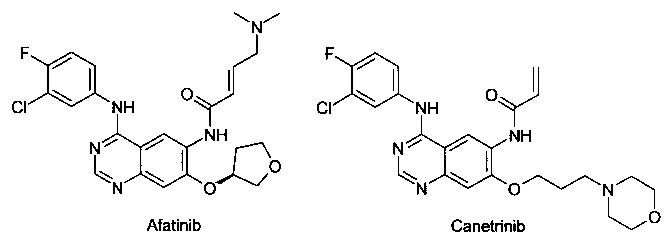 Замещенные n-{ 3-[4-(1-метил-1н-индол-3-ил)пиримидин-2-иламино]-4-метоксифенил} -амиды в качестве модуляторов egfr, предназначенные для лечения рака