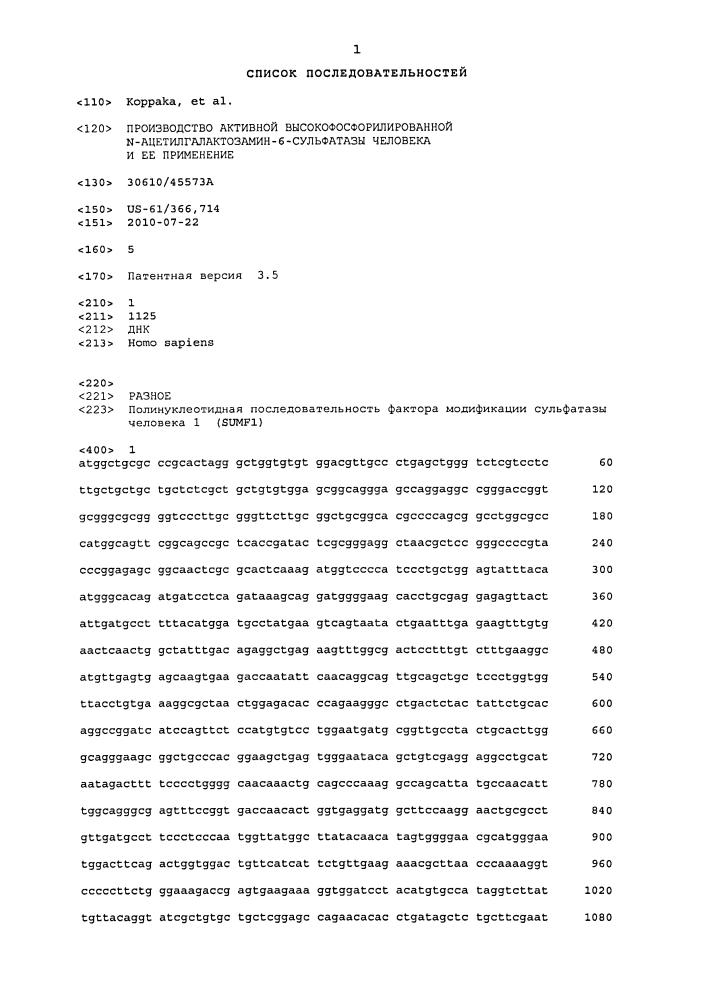 Производство активной высокофосфорилированной n-ацетилгалактозамин-6-сульфатазы человека и ее применение