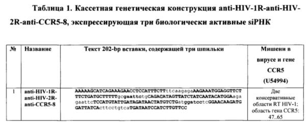 Кассетная генетическая конструкция, экспрессирующая две биологически активные siphk, эффективно атакующие мишени в мрнк обратной транскриптазы вич-1 субтипа а у больных в россии, и одну siphk, направленную на мрнк гена ccr5