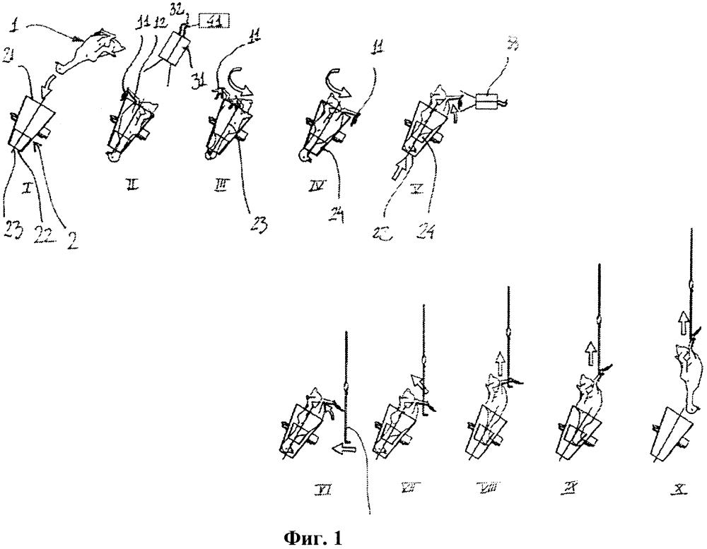 Способ и устройство для подвешивания птиц на подвесном конвейере