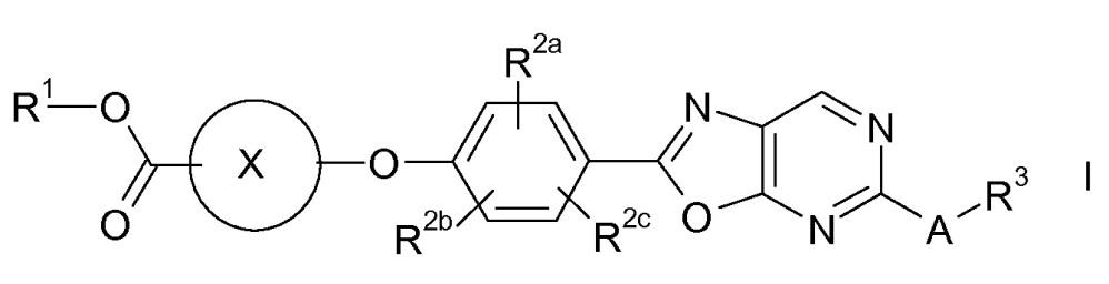 Производные карбоновых кислот, имеющие оксазоло[4,5-d]пиримидиновое кольцо